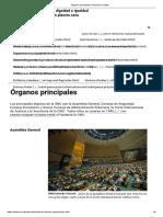 Órganos principales _ Naciones Unidas