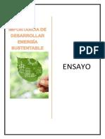 Ensayo_ Energia sustentable