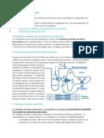 4.3.2.Mécanismes de la contractio1