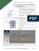 20210118_Riferimenti Anatomici Per La Meditazione_seconda Gerarchia