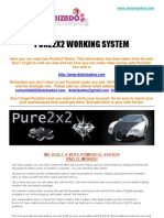 Pure2x2 Working System