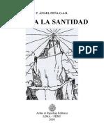 Hacia la Santidad. Angel Peña(en cuadernillo)