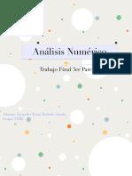Trabajo Final Análisis Numerico