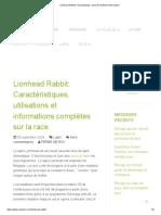 Lionhead Rabbit_ Characteristics, Uses & Full Breed Information