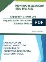 1 Financiamiento Concesiones Guatemala Glee