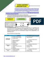 Conclusión descriptiva primaria completo 2020-MD
