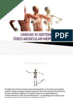 Clase Sistema Oseo Muscular y Nervioso-1