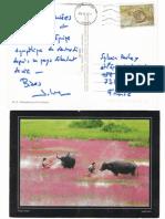 carte postale de julien