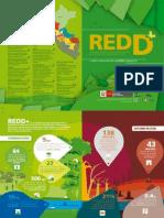 REDD - Díptico Informativo 2011