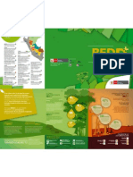 REDD- Tríptico Informativo 2011