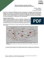 Análisis de co-términos y de redes sociales