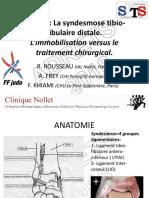 12 Le Judo La Syndesmose Tibio Fibulaire Distale. L Immobilisation Versus Le Traitement Chirurgical. a. Frey, R. Rousseau