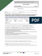 Teste 1 7A pdf
