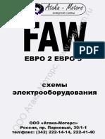 FAW_electro_sh