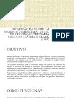 Promoção da Saúde em paciente demenciado (2)