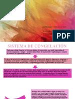 SISTEMA DE CONGELACIÓN yulina