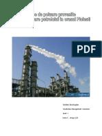 poluare ploiesti word 2003