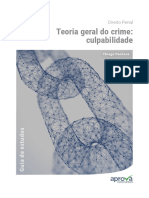 teoria-geral-do-crime-culpabilidade-videoaula-26