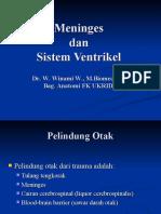 Kuliah 2 - Meninges dan Sistem ventrikel