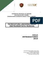 INSTRUMENTISTA-MUSICAL-FAD-
