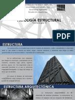 Tecnología Vi - Luisana Tang - Patoligia Estructural