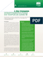 NT4-pt-desmate-fogo-covid-1