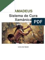 Amadeus- Sistema de Cura Xamânica_Fernanda Kriger
