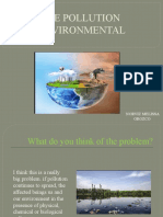 THE POLLUTION Evidence Environmental issues