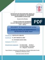 Isolement de Staphylococcus Au - Jihane KENFAOUI_4098