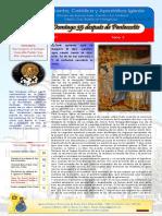 Boletin 133 Año III 35 Domingo Despues de Pentecostés ARGENTINA