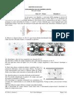 FT_FQA11_Física_D2_SubD2_SubD3_Campos (1)