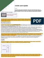biomembran-transportvorgaenge-lipide-biologie