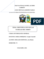 informe del orden ODONATA