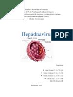 virus de la hepatitis engloba