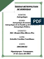 Resumen Temas 3, 4 y 5 Carolina Castellanos