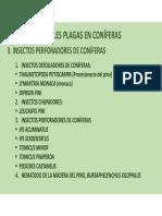 TEMA 2. PRINCIPALES PLAGAS EN CONÍFERAS (II)