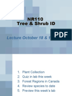 Lecture 4 NR110 October 18, 2010
