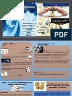 Revista- Digital Contabilidad Financiera v Volumen 1