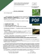 B.a. Nr. 36 Din 03.06 - Omida Păroasă a Dudului.doc