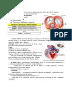 Vladuta-Medicina interna AMG2A-S12