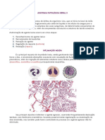Anatomia Patológica Parte 1