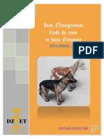 S5 - Etude Du Tronc Et Bases d'Imagerie-DZVET360-Cours-Veterinaire