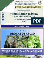 X SEMANA 10_Estudio Toxicologico de Cocaina 2019-I