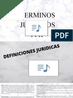 TERMINOS JURIDICOS