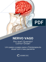 ebook_nervo_vago