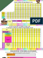 Registro-de-evaluación-en-casa (2)