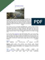 Pencemaran Air Dan Efek Terhadap Kesehatan
