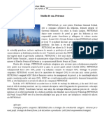 Petronas, studiu de caz