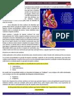 Emergências Cardíacas Aula 1 Ap2