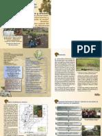 Arboles y arbustos para la conservación de microcuencas y adaptación al cambio climático.